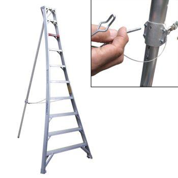 Stokes Telescoping Orchard Ladder
